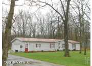 7821 E Shoshone Trail, Branch, MI
